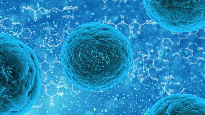 farmaco sperimentale, crescita, tumori, cancro, tumore, angiogenesi, Opa1, Padova, Fondazione Bartolo Longo,