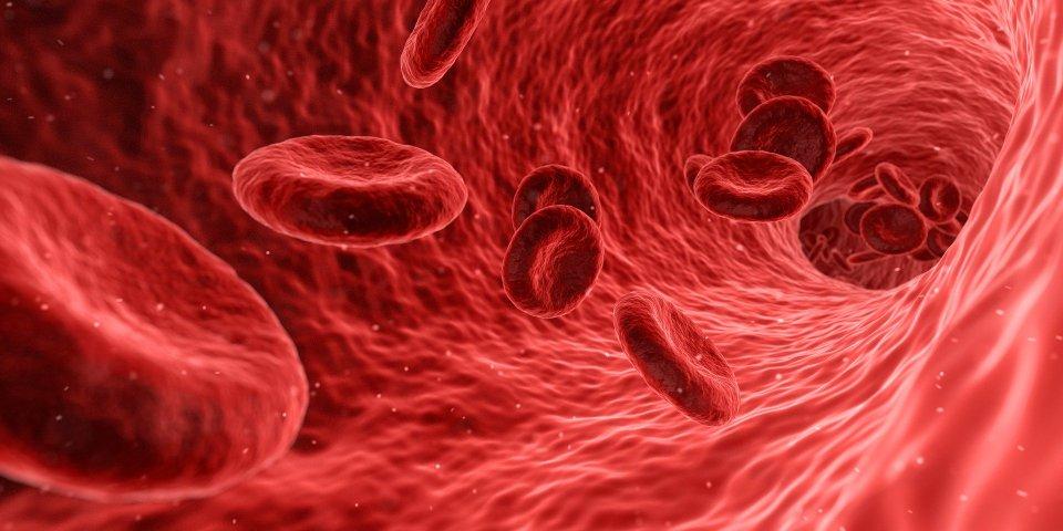 microcitosi, cancro, microcitemia, sentinella, tumore, fondazione bartolo longo,