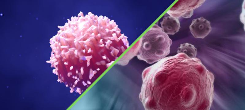tumori rari, rete di riferimento europea, rete nazionale tumori rari,